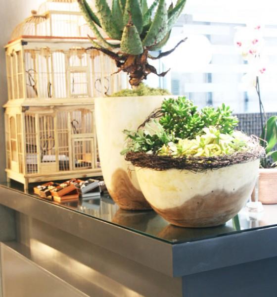 Midori Eco Salon | Spa Parties with coffee and cake!